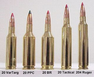 Twenty Caliber Cartridge Guide